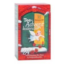Adventti Tee 24pss