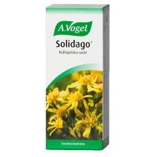 Solidago 50ml Vogel