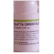 Blatta orientalis Alfaplex 140tbl
